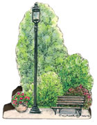 lamp-post-tree-bench-flower.jpg